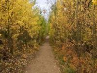 Racoon-Trail---Alexis-B---Hike-6