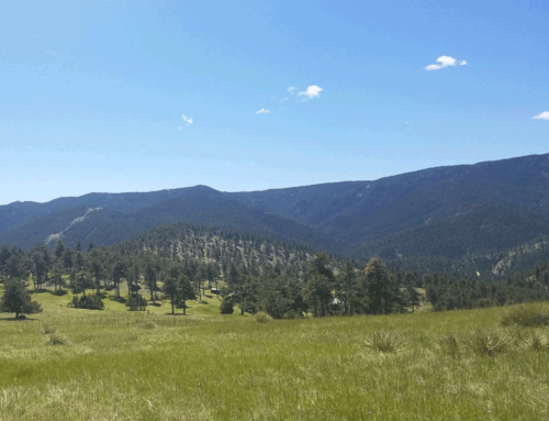 Canyon Loop Trail – CannaVenture® Hike – August 2018