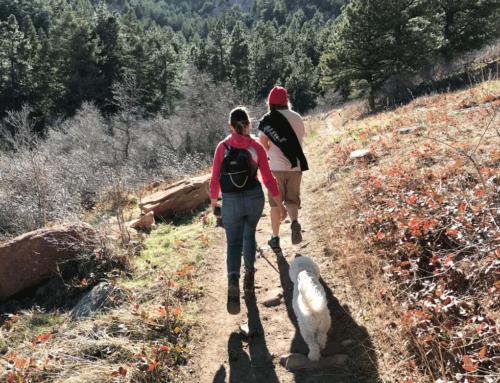 Trip Log – Skunk Canyon Trail – CO – March 2018