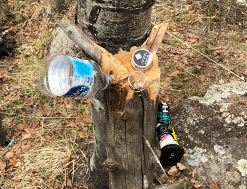 GUIDE: How To Dab in the Woods Without a Rig