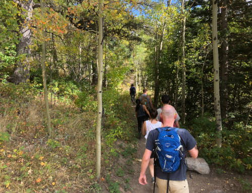 Raccoon Loop – CannaVenture® Hike – August 2019