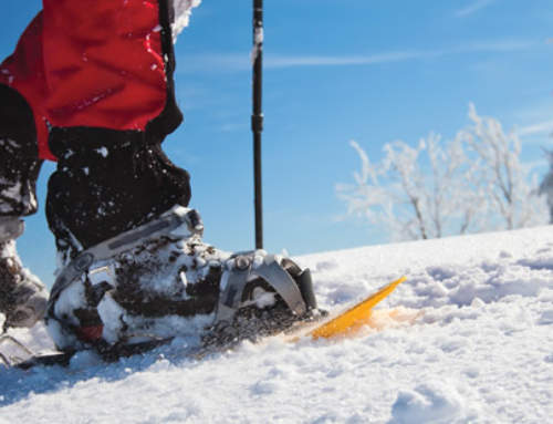 10 Colorado Trails for Snowshoeing Beginners