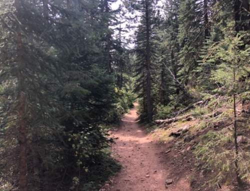 CannaVenture® September Hike 2019 – Recap