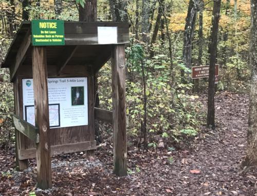CannaVenture® TN Halloween Hemp Hike 2019 – Recap