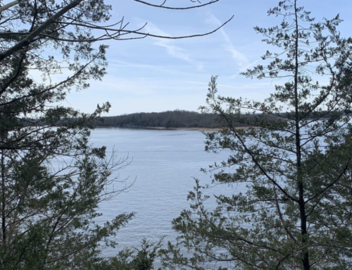 Day Loop Trail – TN Hike – March 2020