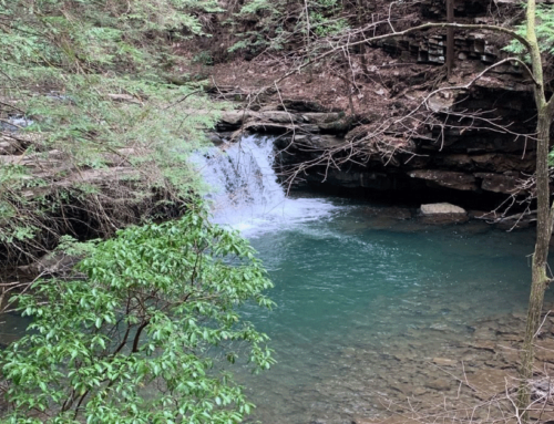 Grundy Day Trail – TN Hike – March 2020