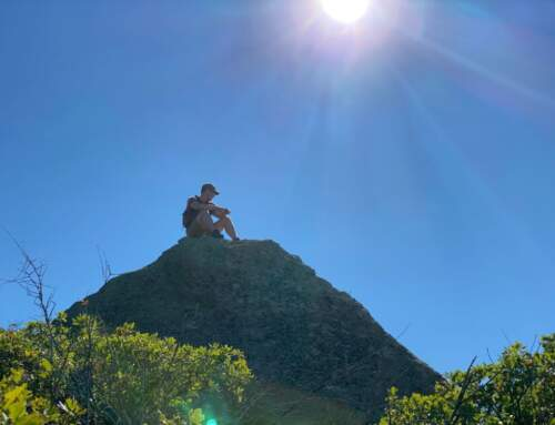 CannaVenture® CO – September Hike 2020 – Recap